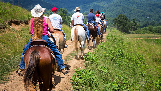Horse Trail Ride at Graves Mountain Music Festival