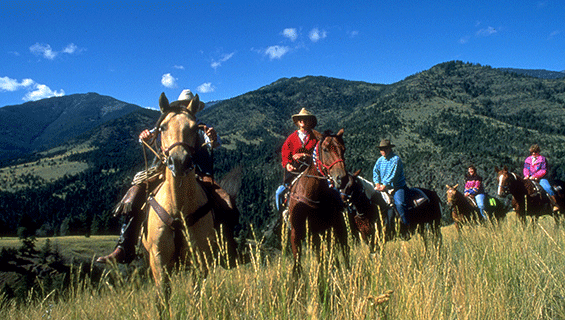 Horse Trail Rides at Graves Mountain Music Festival