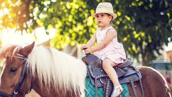 Pony rides at Graves Mountain Farm Music Festival