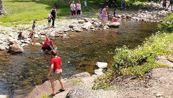 KIDS - stream explore workshop at Graves Mountian Music Festival
